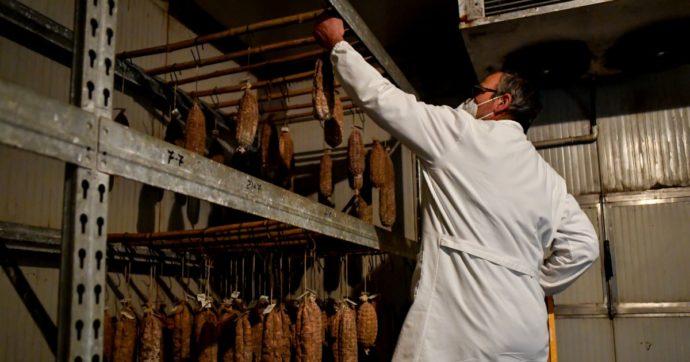 Coronavirus, nuovi focolai nel Mantovano: contagiati 68 lavoratori di macelli e salumifici