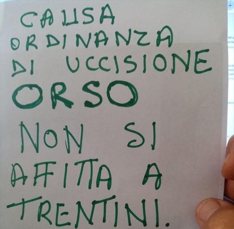"""Orsi in Trentino, M49 castrato. La Provincia: """"Farmaci? No,"""