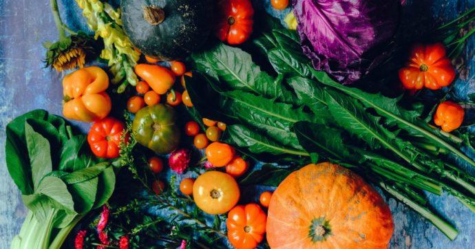 I cibi da agricoltura biologica sono davvero migliori rispetto a quelli convenzionali?