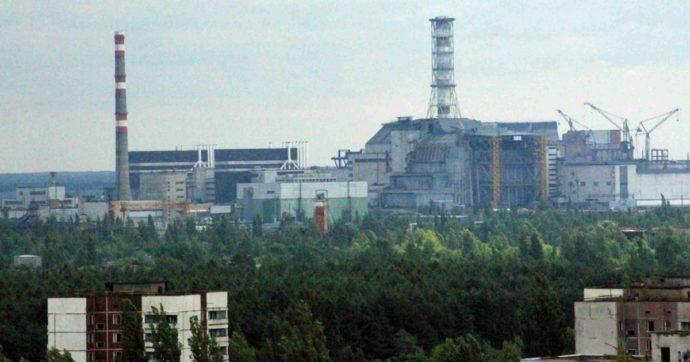 """""""Un esempio di resilienza della natura"""": l'Onu festeggia il ritorno degli animali a Chernobyl. Ma gli esperti: """"Radiazioni ancora gravi"""""""