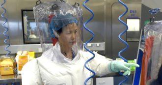 """Covid, la virologa cinese Shi Zhengli contro Trump: """"Deve scusarsi, il virus non è nato a Wuhan"""""""