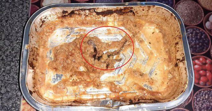 """Trova un topo morto nel piatto pronto acquistato al supermercato: """"Ho vomitato per 12 ore"""""""