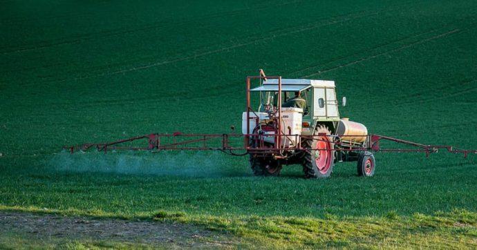 Glifosato, il caos sulla sua messa al bando spiega quanto sia cruciale l'erbicida nell'agricoltura