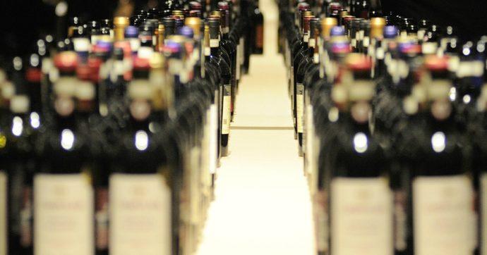Effetto lockdown per il vino italiano, primo calo dell'export in 30 anni. Al via la vendemmia 2020