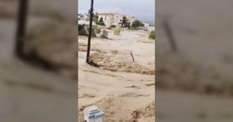 Strade trasformate in fiumi di fango e case danneggiate: inondata l'isola greca di Eubea. Almeno 7 morti tra cui bimbo di 8 mesi – Video