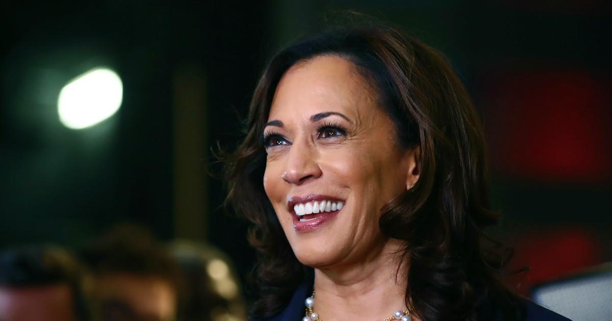 Elezioni americane, Biden sceglie Harris come suo vice. Afroamericana con madre indiana: chi è la donna che vuole lo sfidante di Trump