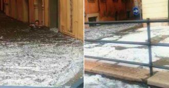 Fiumi di fango e ghiaccio lungo le strade di Verona: ecco le immagini dopo il violento nubifragio – VIDEO