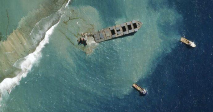 """""""Capelli umani per contenere la marea nera alle Mauritius dopo incidente della petroliera"""": l'iniziativa dei parrucchieri australiani"""
