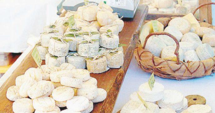 """""""Uccisi dal batterio dei formaggi"""". Caseificio svizzero sotto inchiesta dopo la morte di 10 persone nel 2018 per listeriosi"""