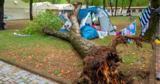 """Inchiesta sulla morte delle sorelle schiacciate dall'albero caduto nel campeggio di Massa. L'esperto: """"Quel pioppo non era sano"""""""