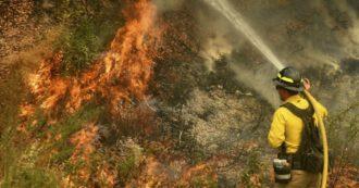 America in fiamme: 15 morti. In Oregon, 500.000 persone sono state evacuate. Trump lancia lo stato di emergenza - Foto