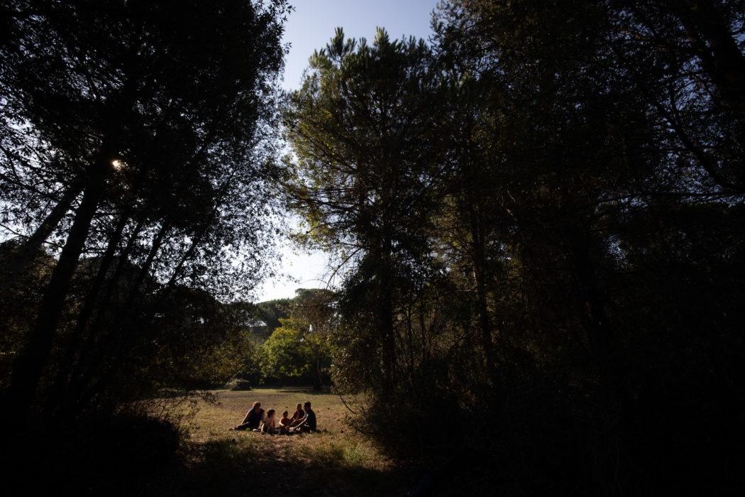 """Ravenna, pineta di Classe """"Nel mezzo del cammin di nostra vita mi ritrovai per una selva oscura, ché la diritta via era smarrita"""" (Inferno I 1-3)"""