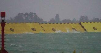 """Venezia, il Mose funziona (per ora): """"Sta bloccando la marea, non filtra acqua"""". Piazza San Marco asciutta"""