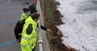 """Maltempo, trovati 5 cadaveri in Liguria tra i detriti a riva. Il sindaco di Sanremo: """"Forse dispersi francesi"""". Allerta in Emilia per il Po"""