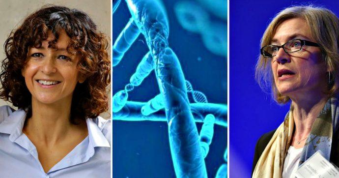 Editing genetico, le straordinarie implicazioni della tecnica premiata con il Nobel per la Chimica alle scienziate Charpentier e Doudna