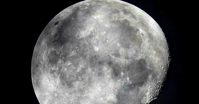 """Una """"banca del seme"""" da mandare sulla Luna per proteggere la vita sulla Terra: lo studio"""