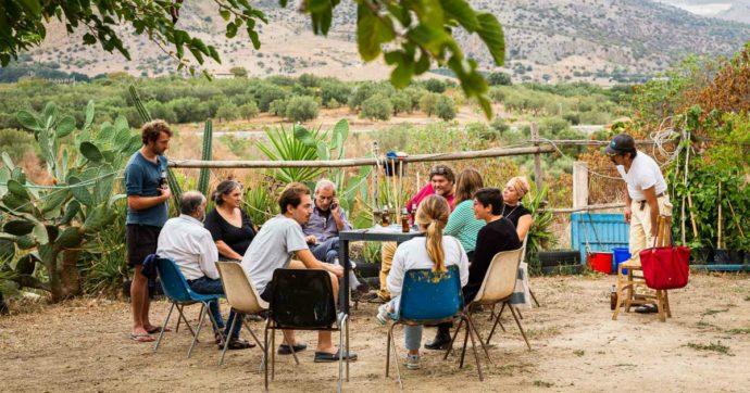 """Sicilia, in un terreno confiscato alla mafia la prima Food Forest dell'isola: """"Filo diretto tra produttori e consumatori senza intermediari"""""""