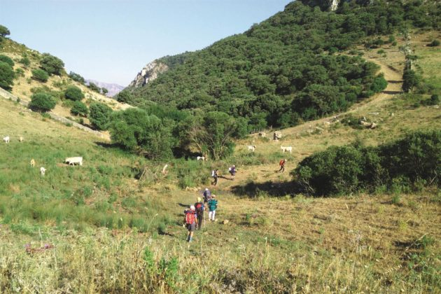 Dai cammini francigeni in Sicilia alla Via degli Dei: così il turismo lento ha retto l'urto della pandemia