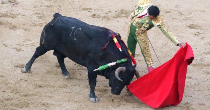 La corrida non sarà patrimonio dell'umanità: l'Unesco rifiuta la sua candidatura e decide di non salvaguardarla