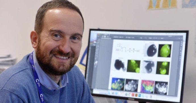 È italiano il miglior scienziato under 40 d'Europa. Il biologo Luca Tiberi lavora agli organoidi su cui riprodurre malattie
