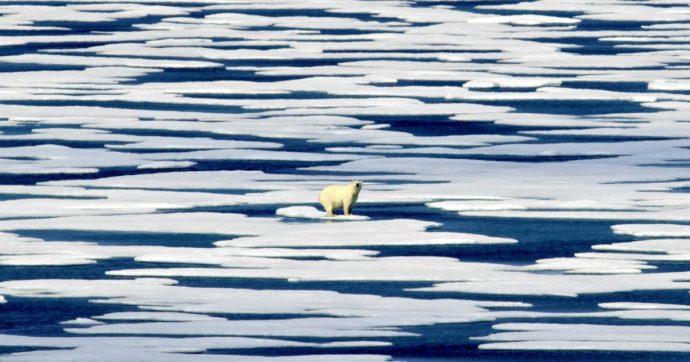 Clima, Conte: 'Italia pronta a donare 30 milioni di euro a Paesi vulnerabili'. Guterres: 'Nazioni dichiarino stato emergenza climatica'
