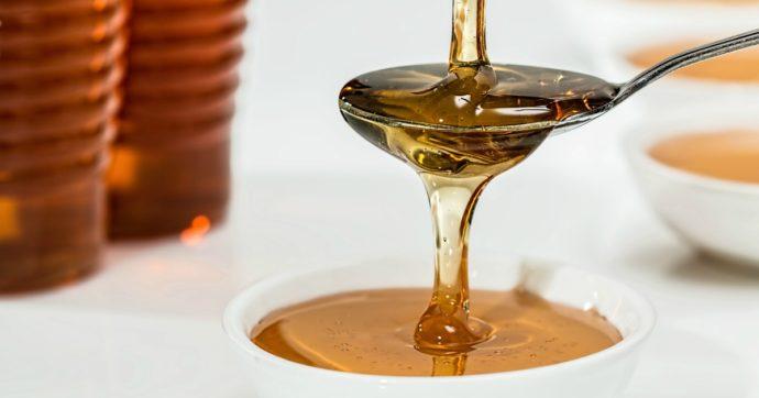 Dalla propoli e dal miele un alleato contro il Covid: le potenzialità della quercetina, da bufala a speranza contro il virus