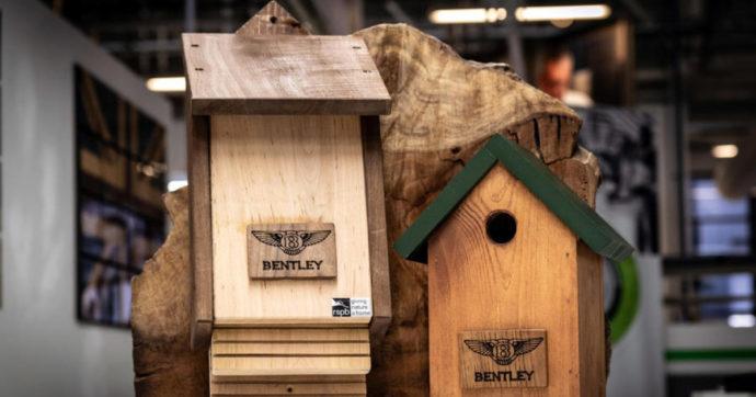 Bentley, nella fabbrica di Crewe installate case e rifugi per pipistrelli e cinciallegre