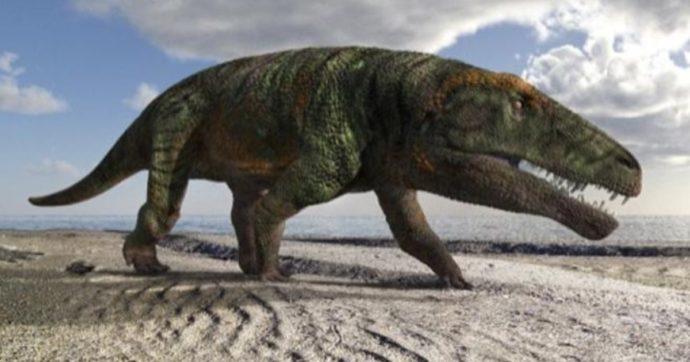 Val Maira, scoperti sulle Alpi le impronte di una nuova specie di dinosauro: è vissuto 250 milioni di anni fa
