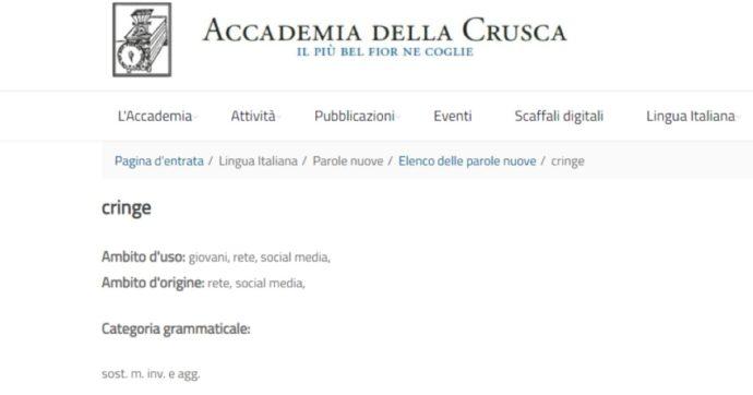 """""""Cringe"""" diventa una parola italiana, arriva la """"certificazione"""" dell'Accademia della Crusca. Ecco perché e cosa significa"""