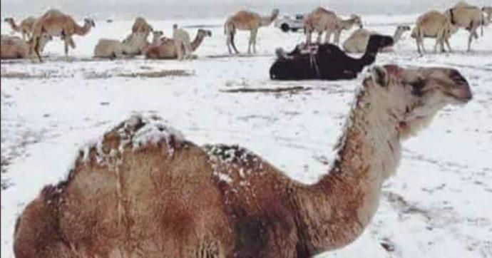 Meteo impazzito, nel deserto del Sahara arriva la neve. E in Arabia Saudita le temperature vanno sottozero – FOTO