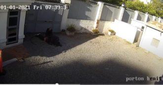 Italiano morto in Uruguay, i video di Luca Ventre all'interno dell'ambasciata: la stretta al collo dell'agente che potrebbe essergli costata la vita