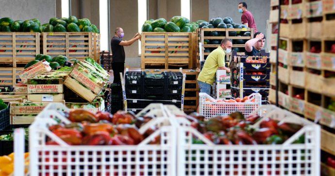 Guadagnare con il Forex: Un Lavoro a Tempo Pieno