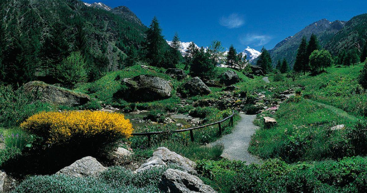 L'Italia dei parchi messa in crisi dai tagli delle Regioni: sempre meno terra (e tutele)