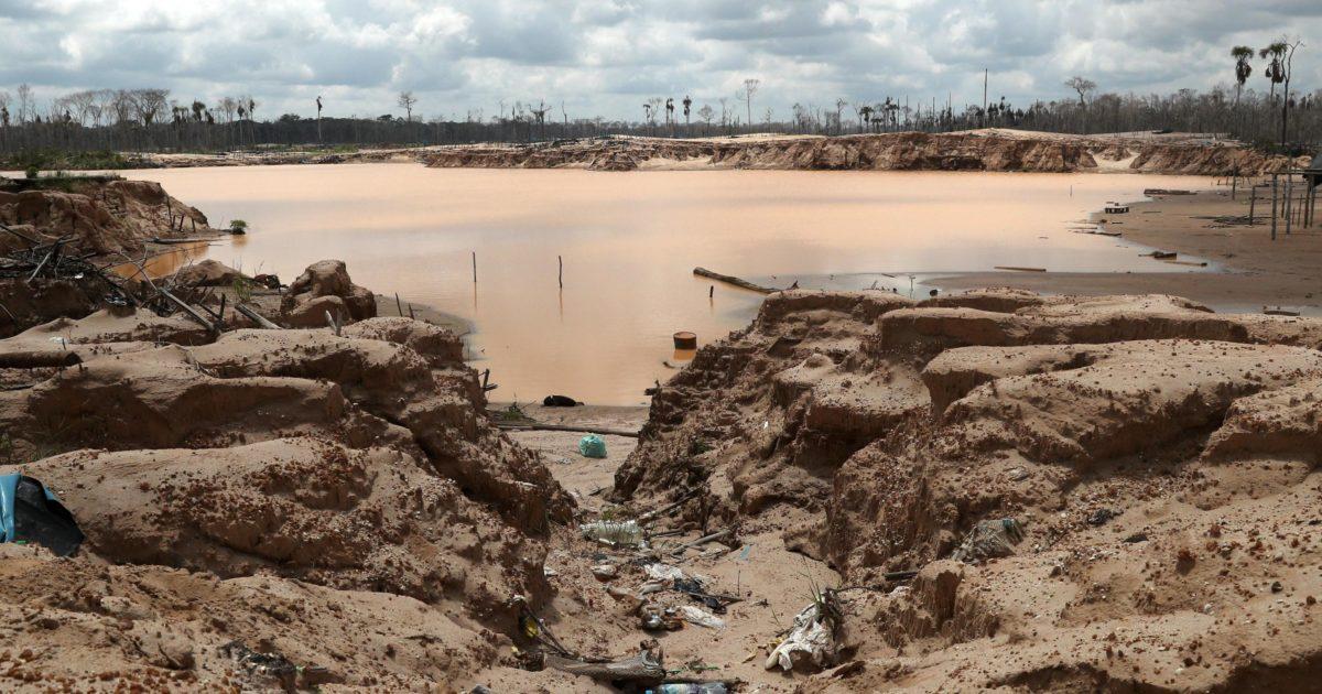 Deforestazione e sfruttamento minerario: la strage silenziosa degli attivisti per l'ambiente
