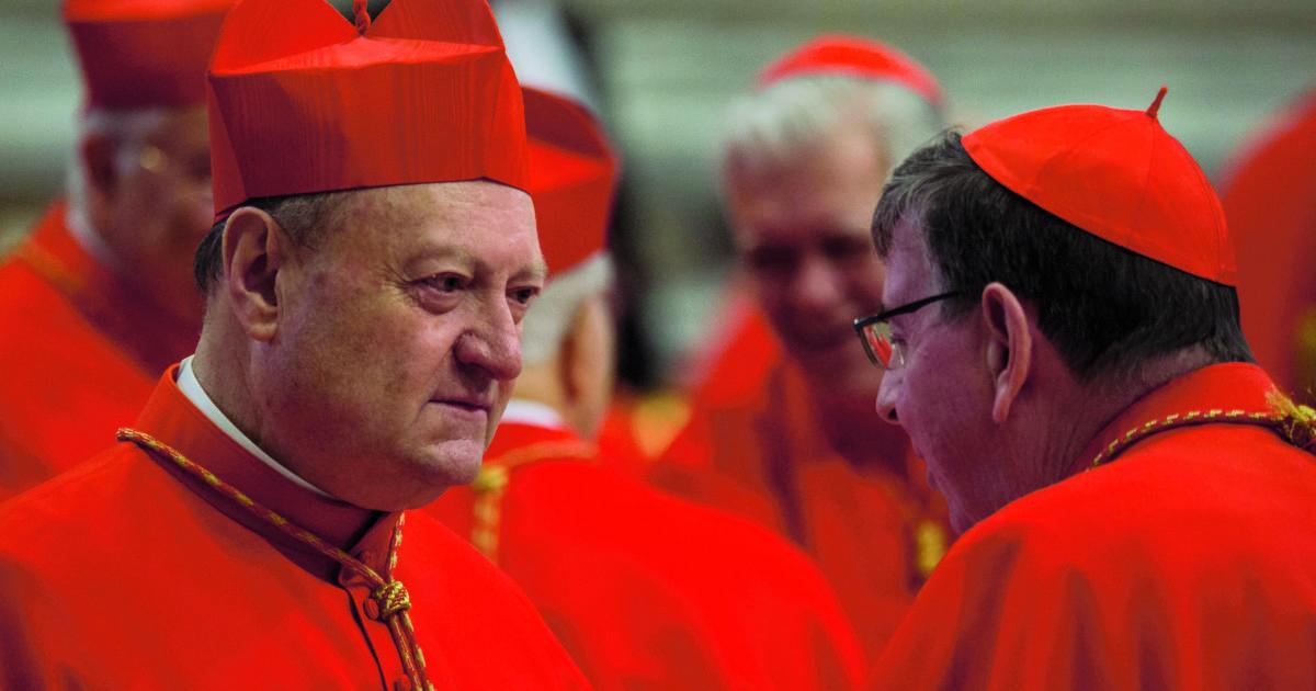 """Il cardinal Ravasi: """"La Bibbia insegna a custodire e amare la terra. L'alleanza tra scienza e fede è centrale"""""""