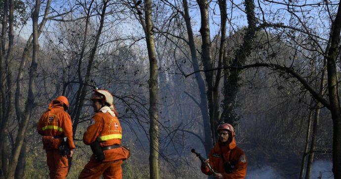 Quando subisci l'incendio di un bosco, non puoi affrontare da solo le spese per la ricostruzione
