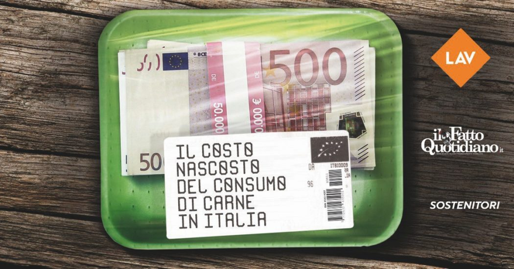 L'insostenibile costo della carne. Per ogni kg di bovino o maiale 19 euro in più: il vero prezzo, inclusi i danni ambientali e sanitari | LO STUDIO