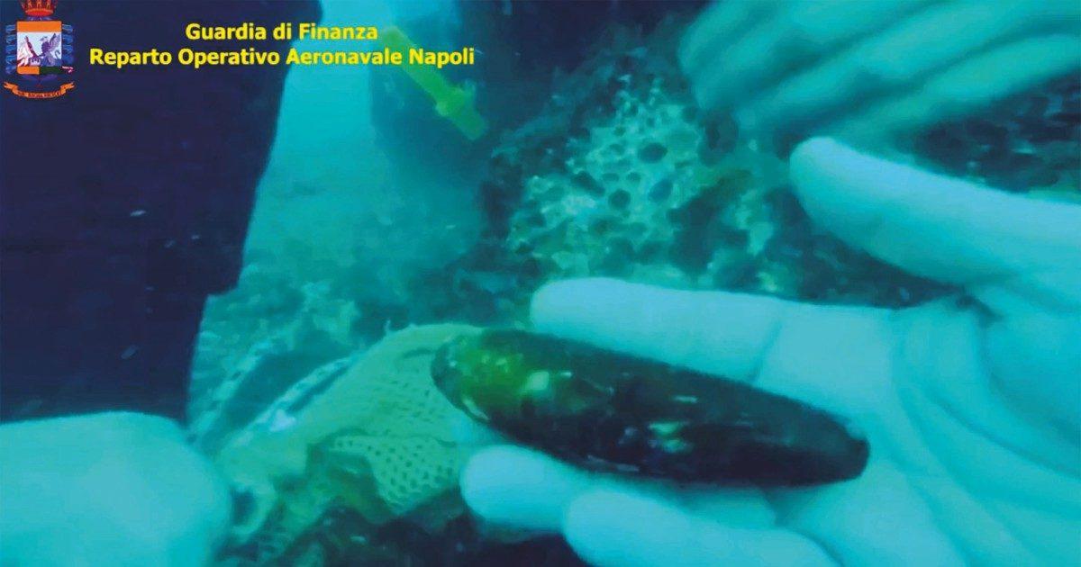 Disastro ambientale ai Faraglioni di Capri, scogli devastati per pescare datteri di mare