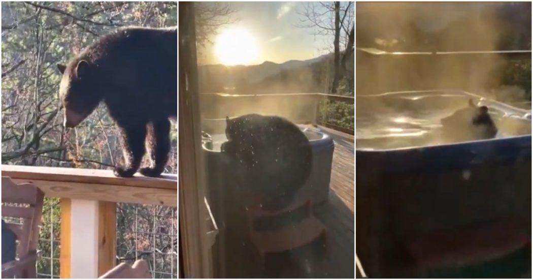 L'orso si gode l'idromassaggio caldo sul balcone: le immagini incredibili riprese dal padrone di casa (video)