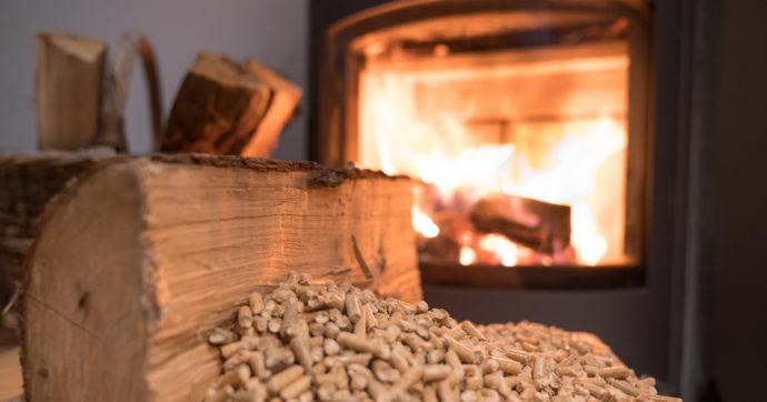 Cambiamenti climatici, le biomasse legnose potrebbero giocare un ruolo fondamentale