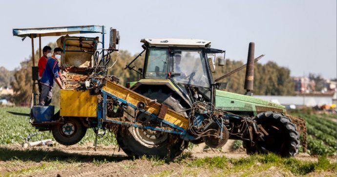 Cagliari, 16enne morto schiacciato da trattore: era salito di nascosto sul mezzo agricolo