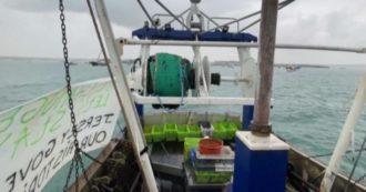 La protesta dei pescherecci francesi a isola Jersey contro le condizioni imposte dalla Brexit: 50 barche riunite fuori da St. Helier – Video