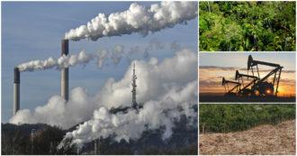 Clima, piantare foreste per inquinare di più: cosa c'è dietro i progetti di compensazione di CO2 delle multinazionali. Report Greenpeace su Eni