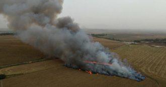 Israele ha spento le fiamme provocate dai palloni incendiari lanciati dalla Striscia di Gaza. Immagini