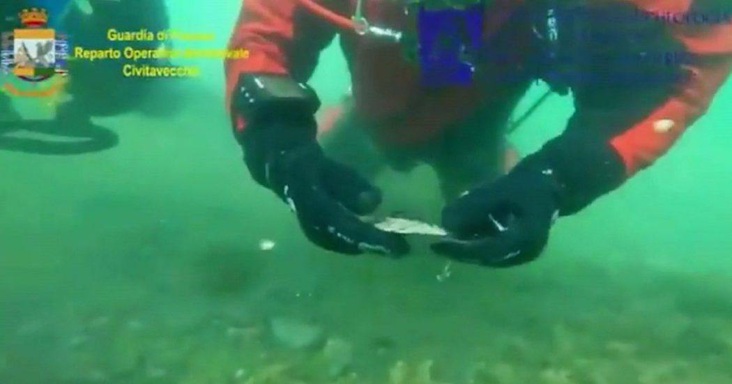 Archeologia, la scoperta dei sommozzatori di Finanza: un coltello e una moneta del IV secolo dopo Cristo sul fondo del lago di Bolsena
