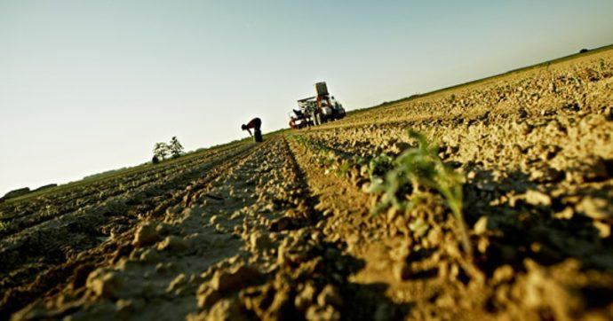 Agricoltura biologica, cibo di qualità e comunità resilienti: ecco perché ho proposto i biodistretti