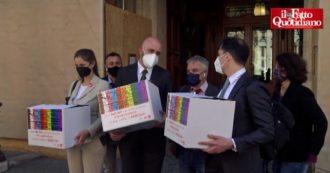 """Omotransfobia, consegnate in Senato 460mila firme: """"Approvare ddl Zan così com'è. Italia Viva chiede modifiche? Così si affossa la legge"""""""