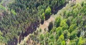 Stresa-Mottarone, il video del luogo dello schianto ripreso dall'elicottero della polizia