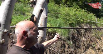 """Mottarone, il gestore del maneggio vicino alla funivia mostra i cavi caduti: """"In 11 anni ho visto due volte far scendere le persone con una fune"""""""