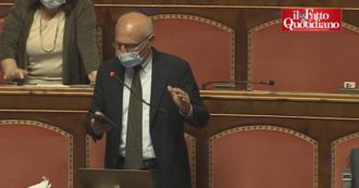 """Annuities, Primo Di Nicola: """"Motions do not capture the substance of the problem.  A coup took place in the Senate """".  Protests from the benches"""